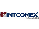 logo_intcomex